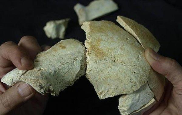 Sima de los Huesos